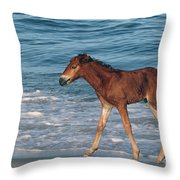 597a Throw Pillow
