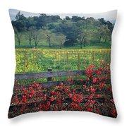 5b6301 Vineyards Of Color Throw Pillow