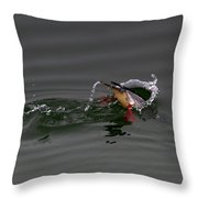 Red Breasted Merganser Fishing Throw Pillow