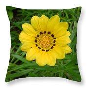 Australia - Daisy With Yellow Petals Throw Pillow