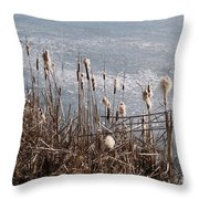Bulrush Throw Pillow
