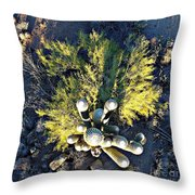 Cactus Saguaro Throw Pillow