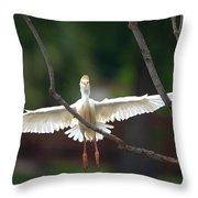 Cattle Egret In Flight Portrait Throw Pillow