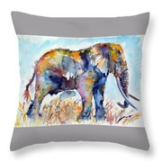 Colorful Cute Elephant Throw Pillow
