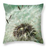 Dandelion Seeds On Flower Head Throw Pillow