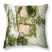 Detail Of Brich Bark Texture Throw Pillow