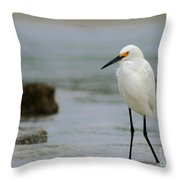 Egret Throw Pillow