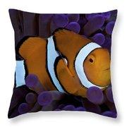 False Ocellaris Clownfish In Its Host Throw Pillow