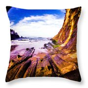 Fisheye Camera Throw Pillow