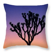 Joshua Tree With Special Effects Throw Pillow