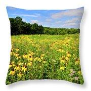 Marengo Ridge Wildflowers Throw Pillow