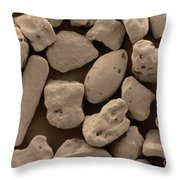 Sand Sem Throw Pillow