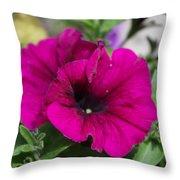 Sounds Of Summer  Throw Pillow