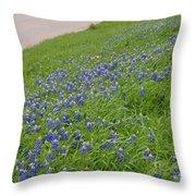 Texas Bluebonnets  Throw Pillow