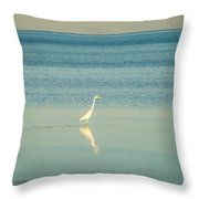 Tranquil Nature In Florida Keys Throw Pillow
