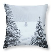 Winter Landscapes Throw Pillow