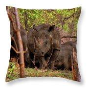 Zambia Throw Pillow
