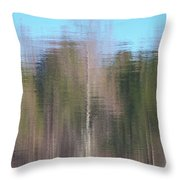 6001-reflections Throw Pillow