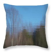 6002-reflections Throw Pillow