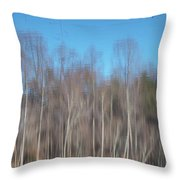 6003-reflections Throw Pillow