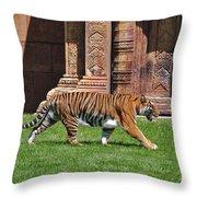 61- Sumatran Tiger Throw Pillow