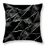 6144.2.1 Throw Pillow