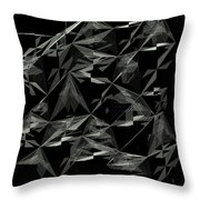 6144.2.23 Throw Pillow