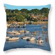 62- Hangin' At The Sandbar Throw Pillow