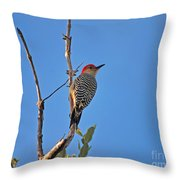 62- Red-bellied Woodpecker  Throw Pillow