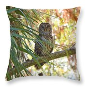 6204 Throw Pillow