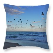 65- Black Skimmers Throw Pillow