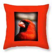 6751-010 Cardinal - Miss You Throw Pillow