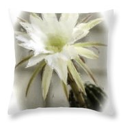 68 Throw Pillow