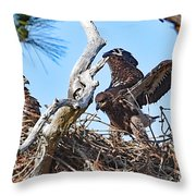 6823 Throw Pillow