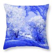 Nature Landscape Illumination Throw Pillow
