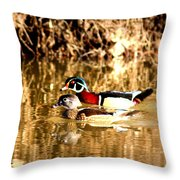 6980 - Wood Duck Throw Pillow