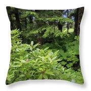 Alaska_00007 Throw Pillow