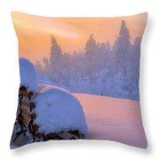 Az Landscape Throw Pillow