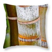 Bamboo Palm Throw Pillow