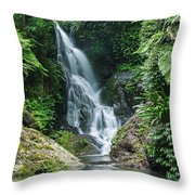 Beautiful Waterfall Throw Pillow