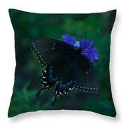 Black Swallowtail Throw Pillow