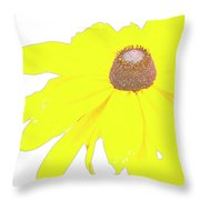 Blackeyed Susan Flower Throw Pillow