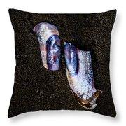 Fallen Butterfly Throw Pillow