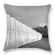 Flight 93 National Memorial Throw Pillow