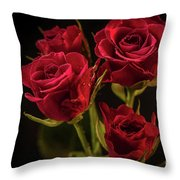 For Her Throw Pillow