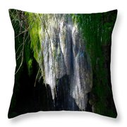 Gormon Falls Colorado Bend State Park.  Throw Pillow