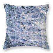 7. Ice Encrustation, Upper West Allen Throw Pillow
