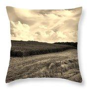 Iowa Cornfield Throw Pillow