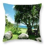 Keanae Maui Hawaii Throw Pillow