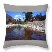 Lower Sisquoc River - San Rafael Wilderness Throw Pillow